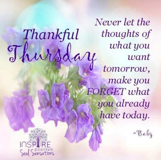 Thankful Thursday Inspirational Quotes: It Is A Nice Life