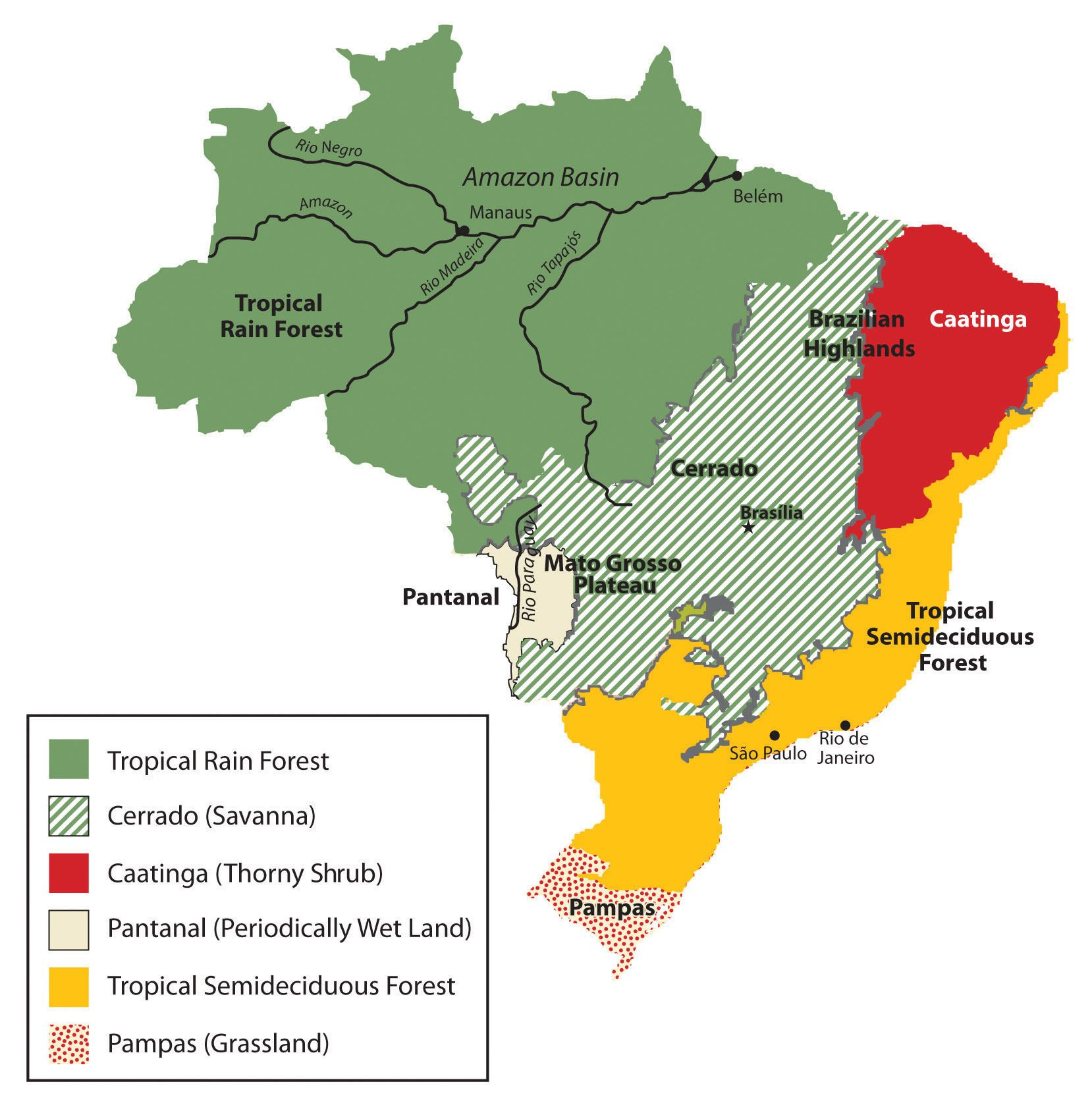 Natural Vegetation of Brazil | Maps | Brazil geography ...