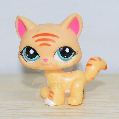 Littlest Pet Shop Colecao Littlest Pet Shop Figura Solta Brinquedo Gato Gatinho Caminhada Tigre Little Pet Shop Toys Littlest Pet Shop Pet Toys