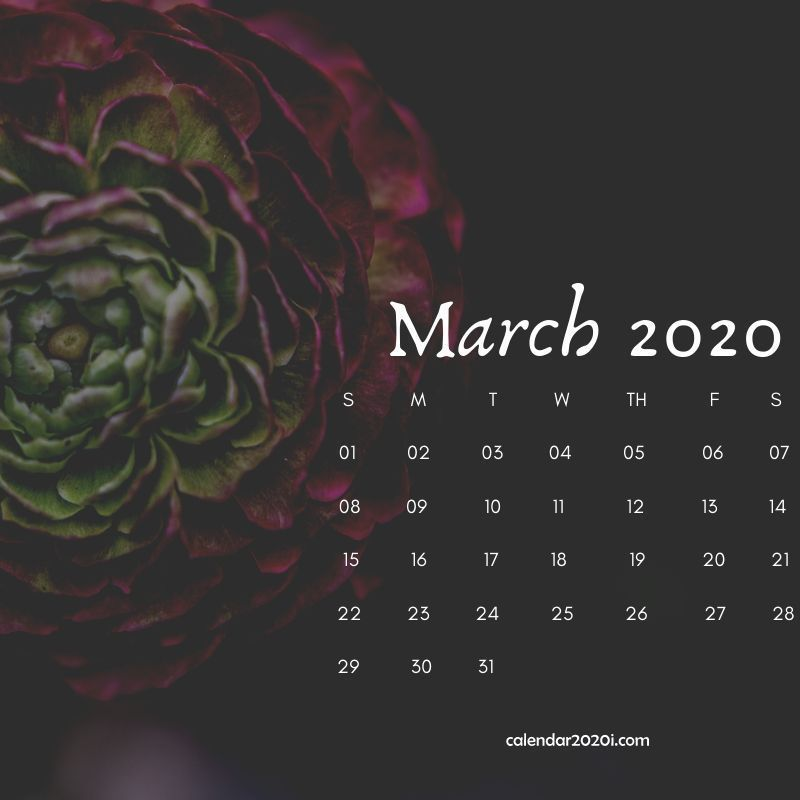 Floral March Calendar 2020 Cute Wallpaper For Desktop Laptop