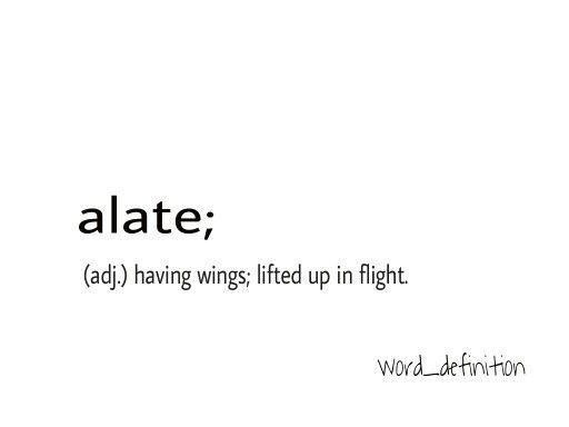 Word definition, words, vocabulary, pronunciation