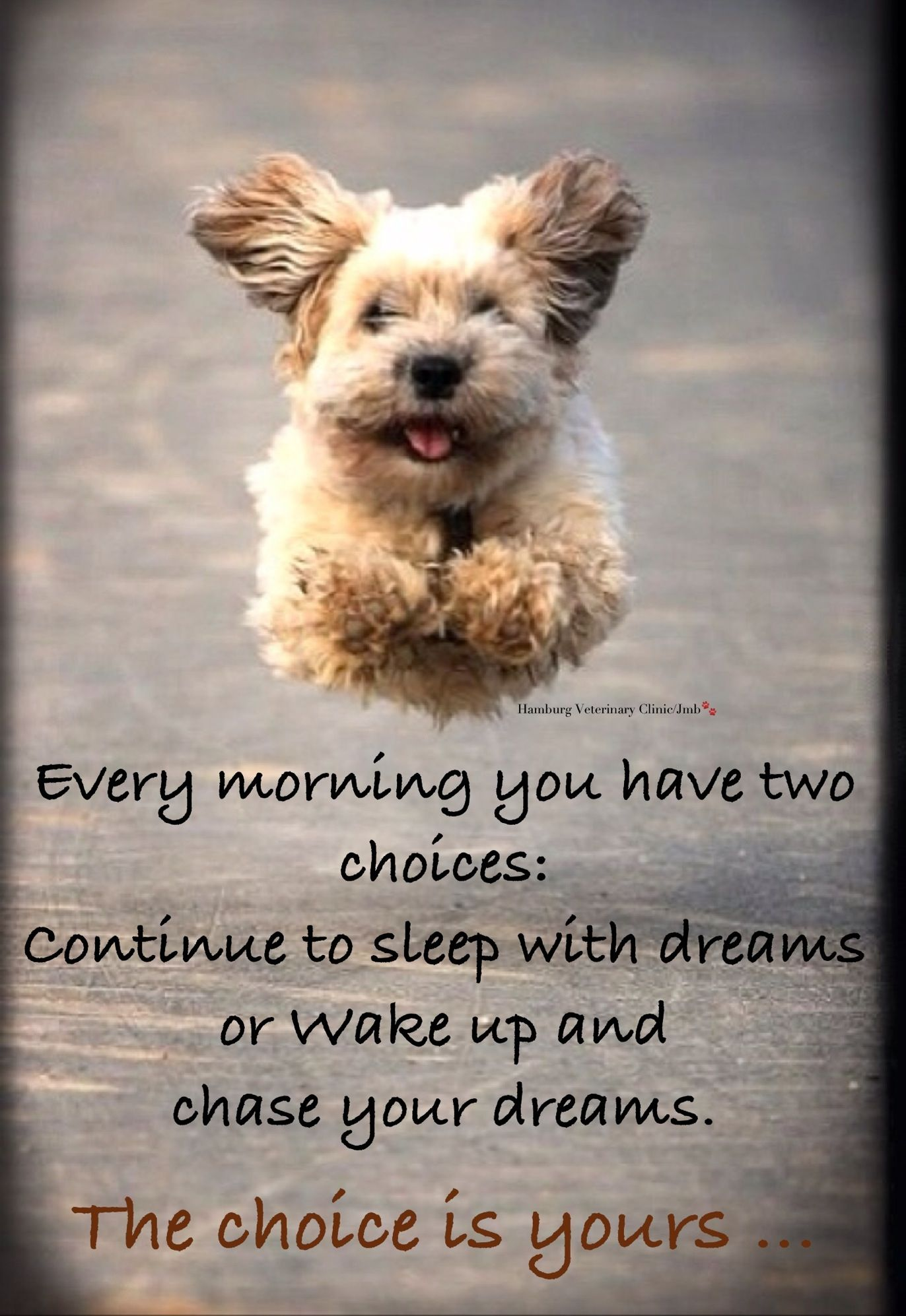 Good Morning. Time to WAKE UP and Chase your DREAMS Cute