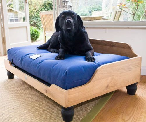 Berkeley Raised Wooden Dog Bed | Pinterest | Dog beds, Dog and Large ...