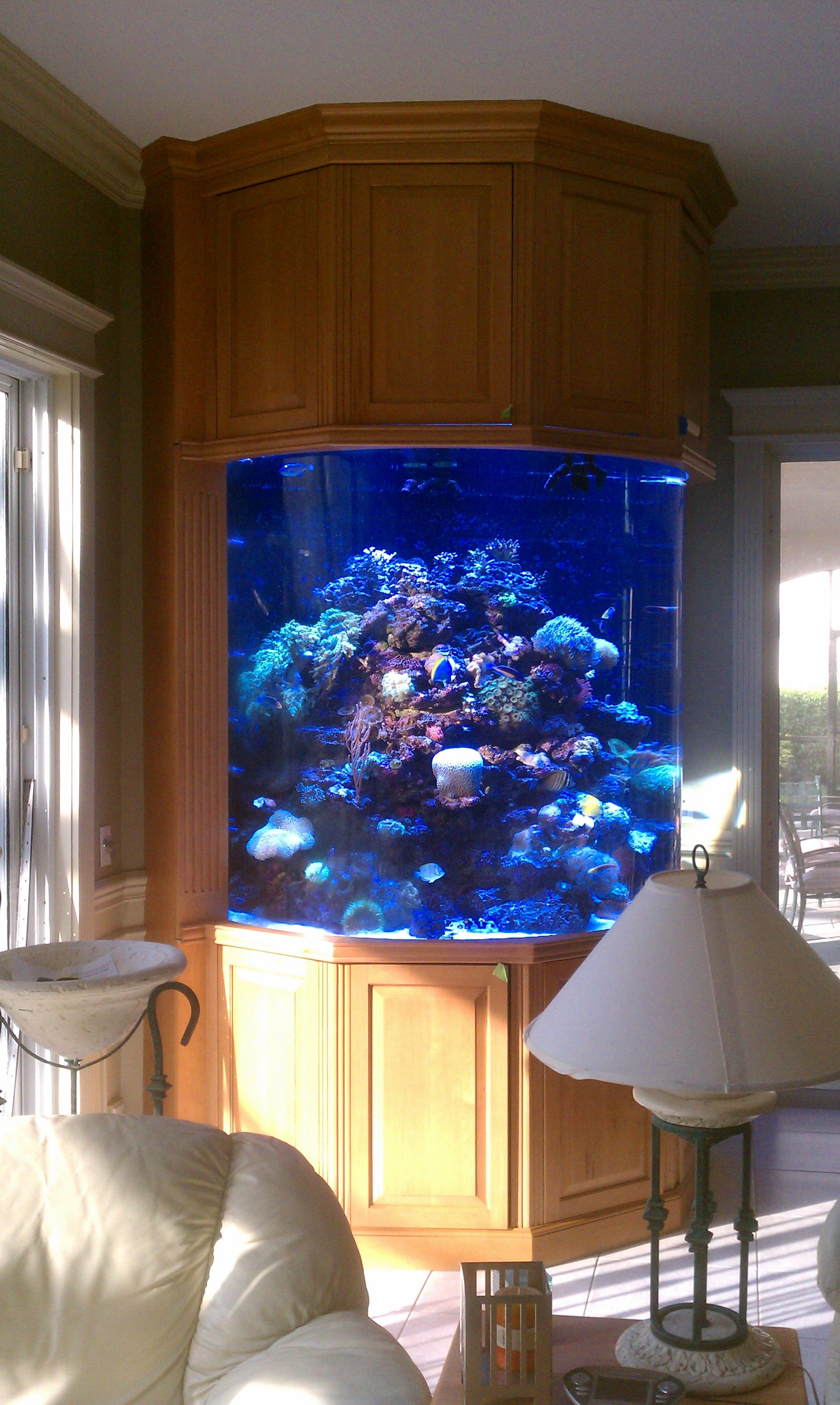 Custom fish tank cabinetry cabinetry by ecco woodcrafts for Wall fish tank