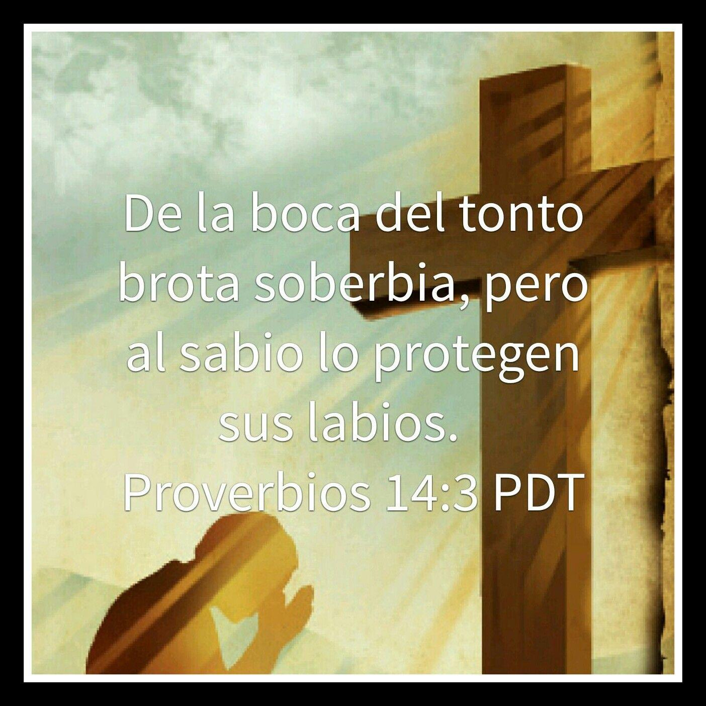 Galeria de Versiculos Biblicos: Proverbios 14:3   a religión ...