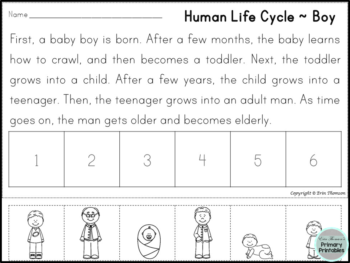 FREE Human Life Cycle Sequencing Story ~ Boy and Girl Versions ...