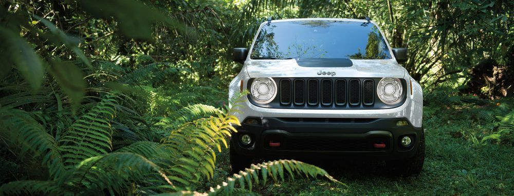Jeep Renegade Vin Jeep Renegade Vin Jeep