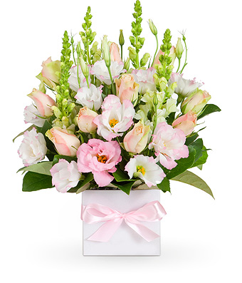 Geelong Flower Delivery Send Flowers to Geelong from 39