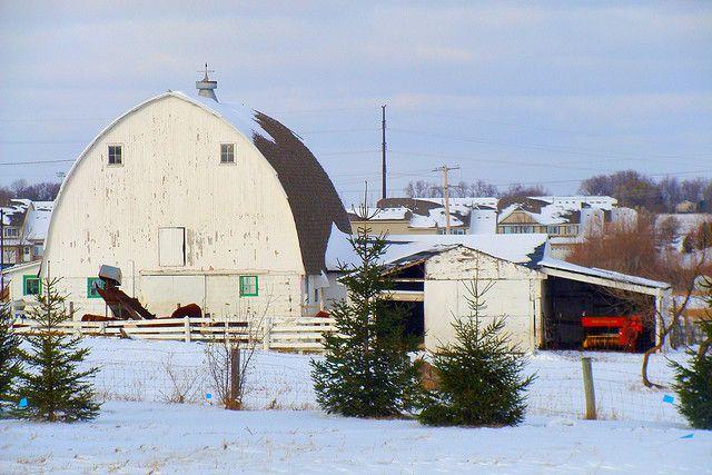 Minnesota Barn by Doug Wallick
