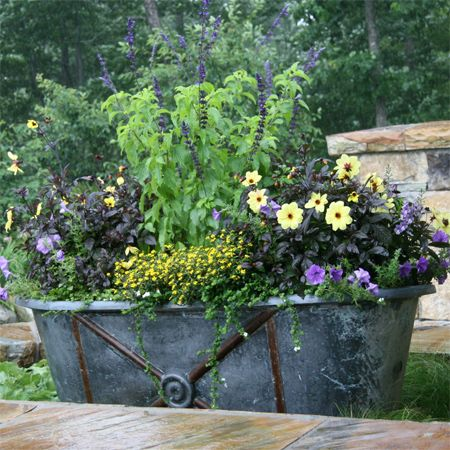 Unique Flower Pot Or Container Ideas Zin Tub Bath