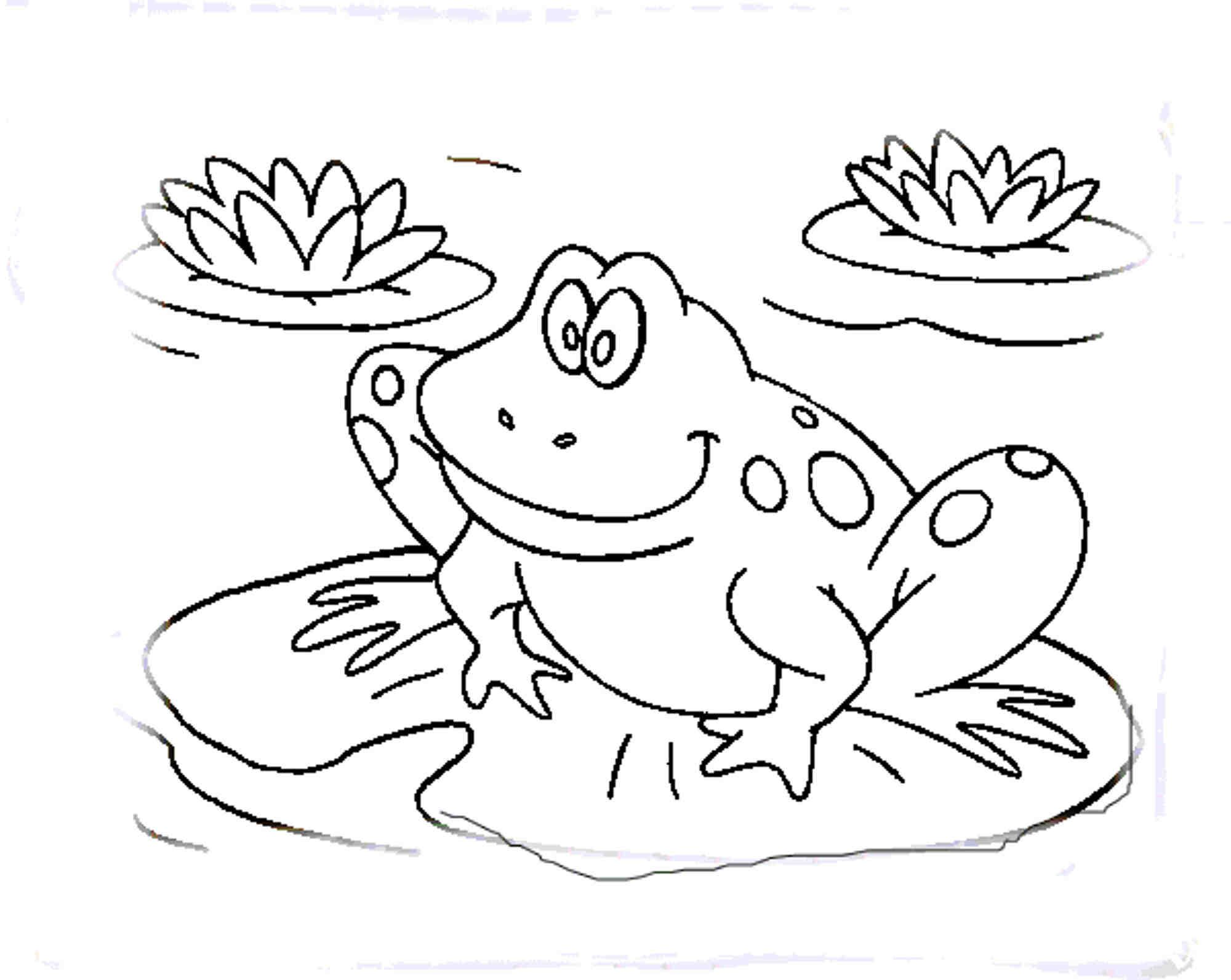 Frog Coloring Pages Printable Kids Colouring Gekimoe 10311 ...