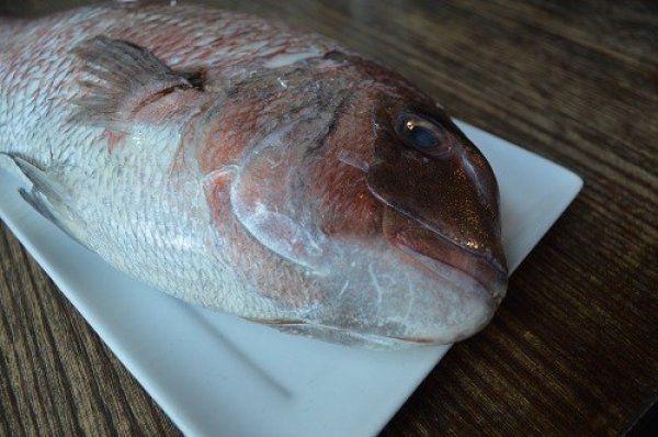 Acupuntura en pescados. La obsesión por la frescura en Japón.