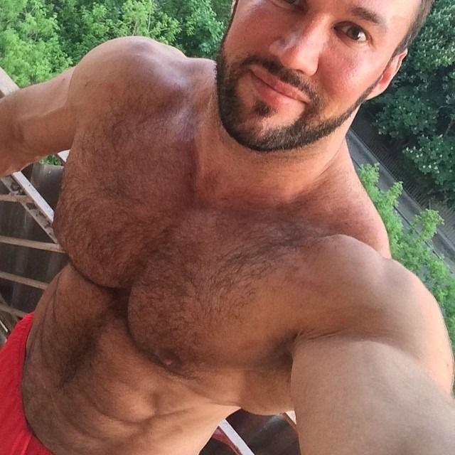 gay bears videos