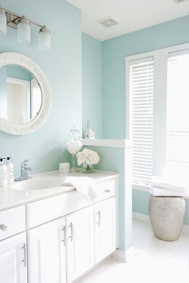 Sherwin Williams Rainwashed Bathroom New Sherwin Williams ...