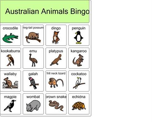 Australian animals bingo 4 Australian animals, Bingo