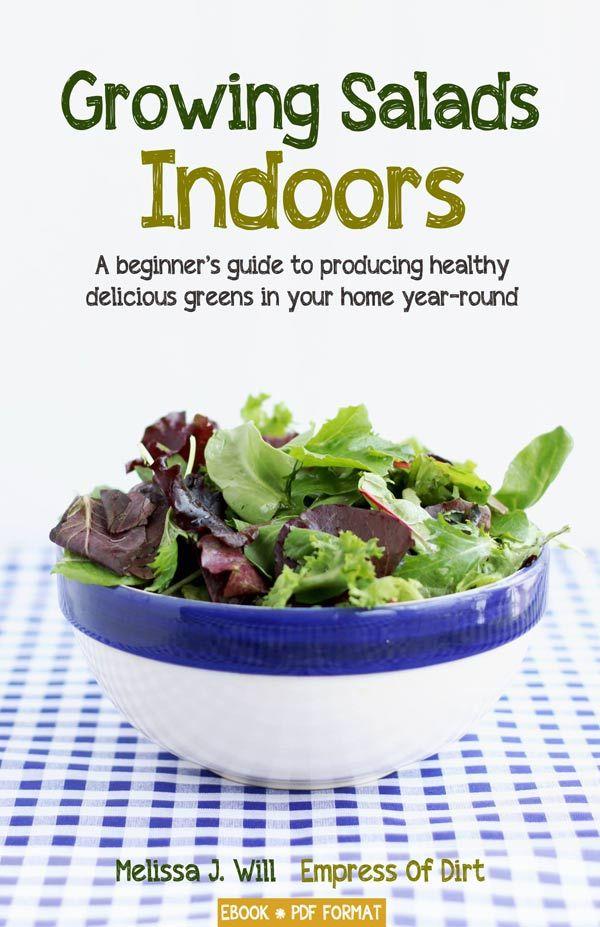 Growing Salads Indoors—Year Round Indoor Vegetable 400 x 300