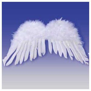 474db0a387bb Wings for swan costume. Feathers glued to cardboard.   halloween ...