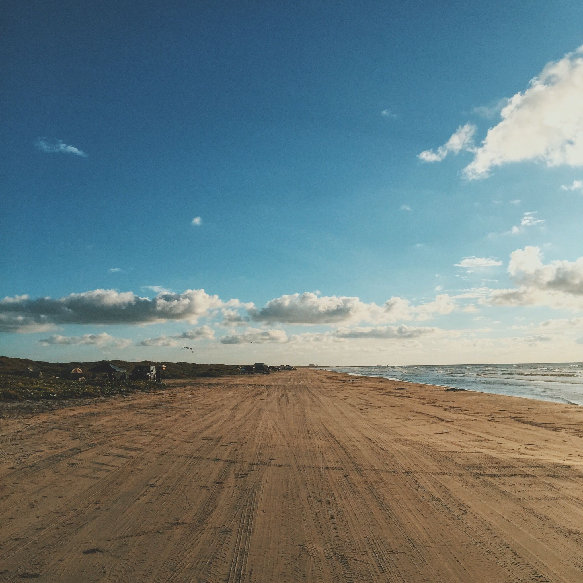 Mustang Island Beach: Mustang Island State Park (With Images)