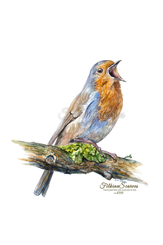 Red Robin Bird Watercolor Painting Art Print New Home Wall Art