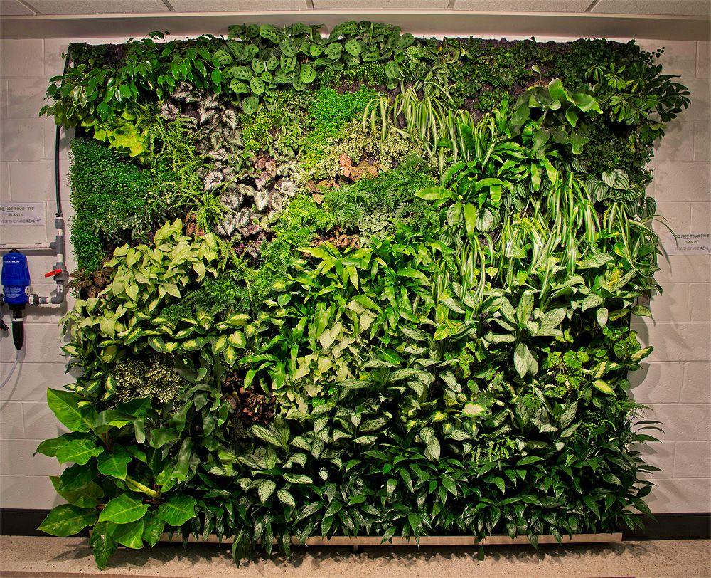 Greenwallg pixels vertical garden pinterest