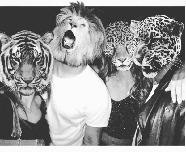 David Naman Secret party  #tiger #lion #mask #party
