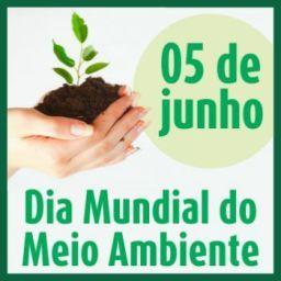 05 De Junho Dia Mundial Do Meio Ambiente Meio Ambiente Meio