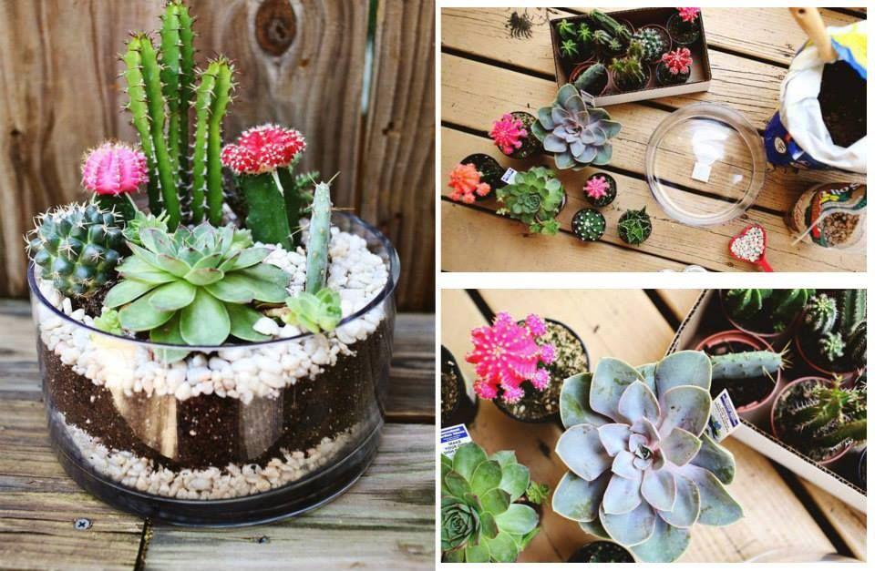 Ideas for the garden manualidades vidrio frascos etc - Peceras pequenas decoradas ...