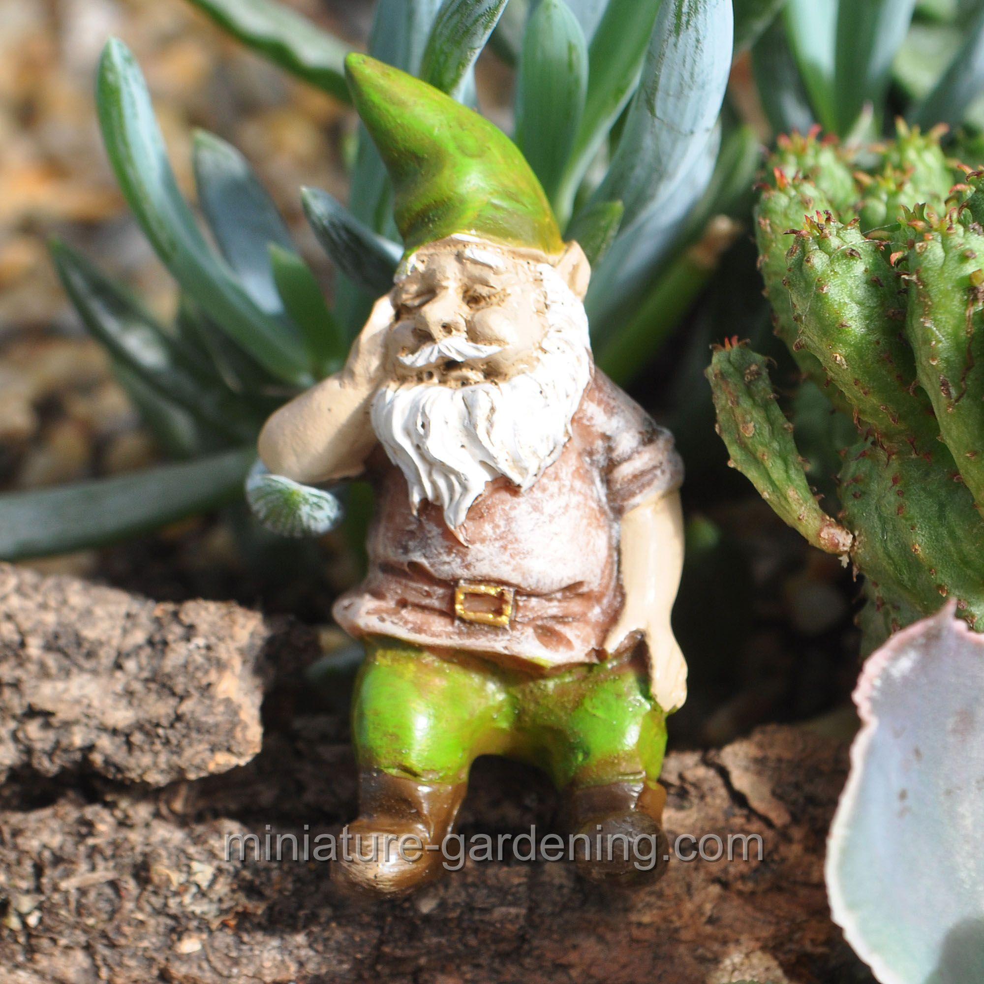 Gnome Garden: Iggy The Gnome #fairy-gardening > $4
