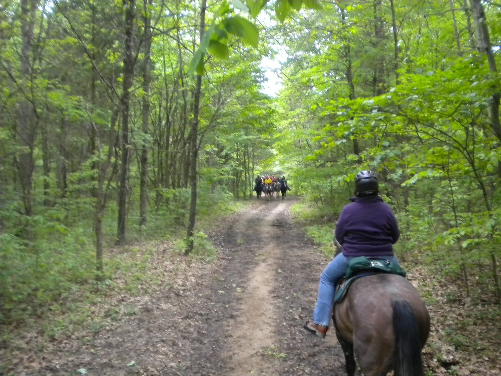 Brown County State Park - Nashville, Indiana is on the featured destination list for THE AMAZING CAMP-LAND RACE