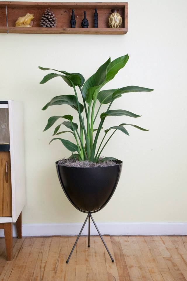 The Retro Bullet Planter By Hip Haven