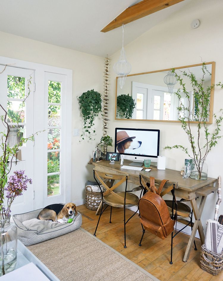Small Cottage Interiors Cozy Home Office Cottage: The Cottage, Offices And Plants