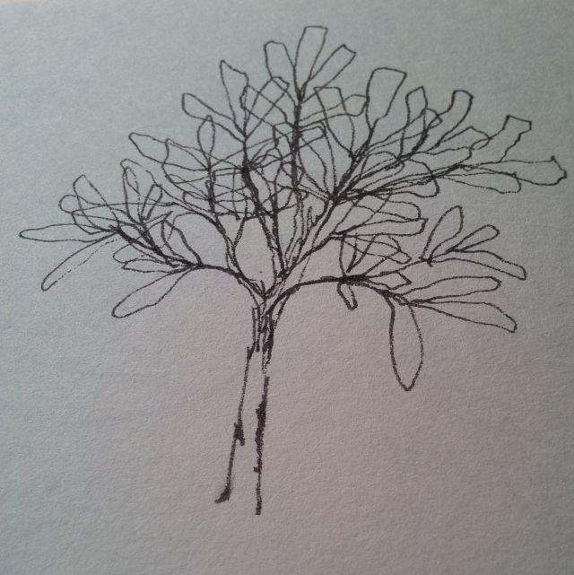 Skizze: Baum