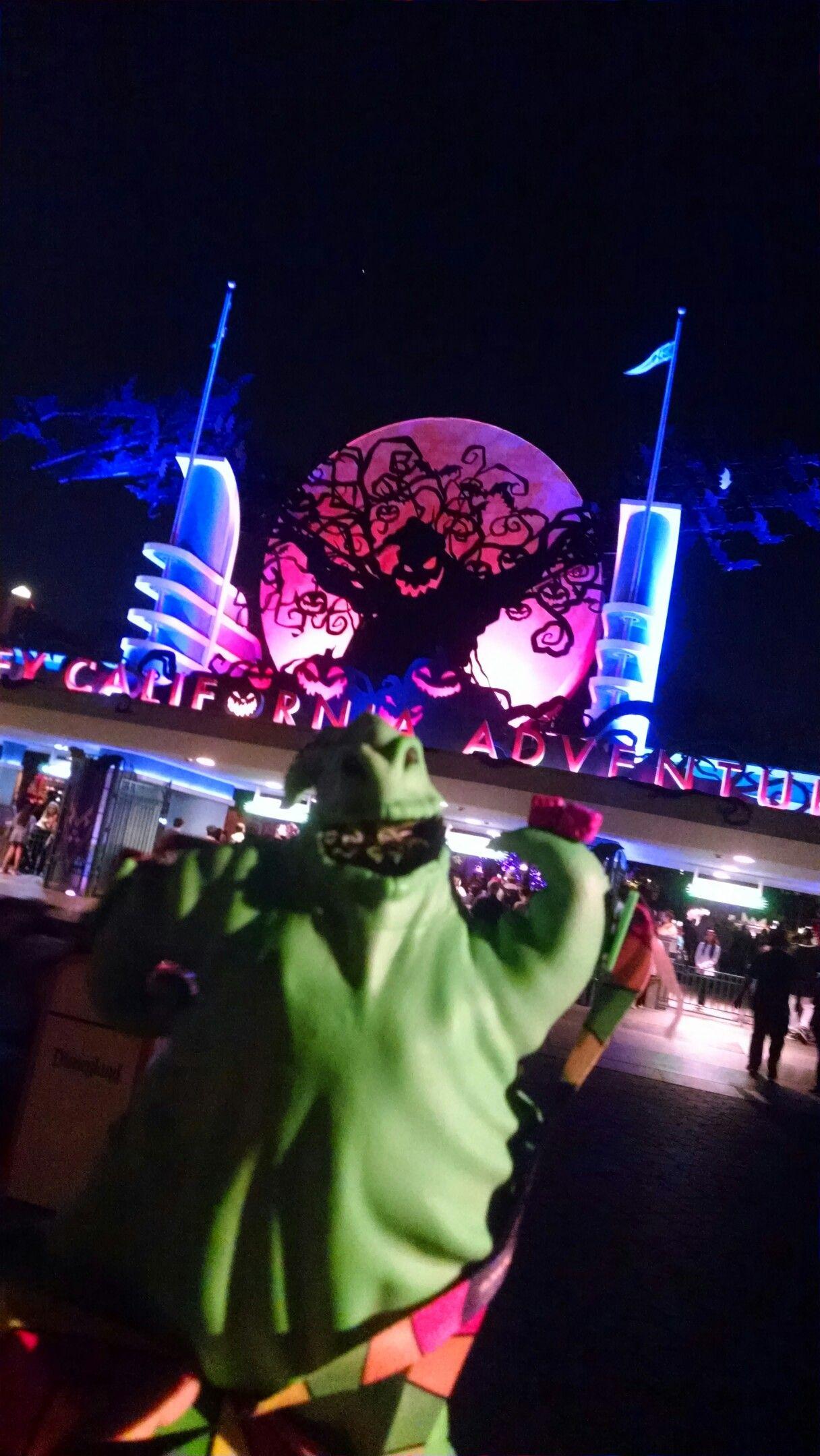 Disneyland Halloween Popcorn Bucket 2018.Oggie Boggie Popcorn Bucket Disneyland Ca 2018 Dreaming