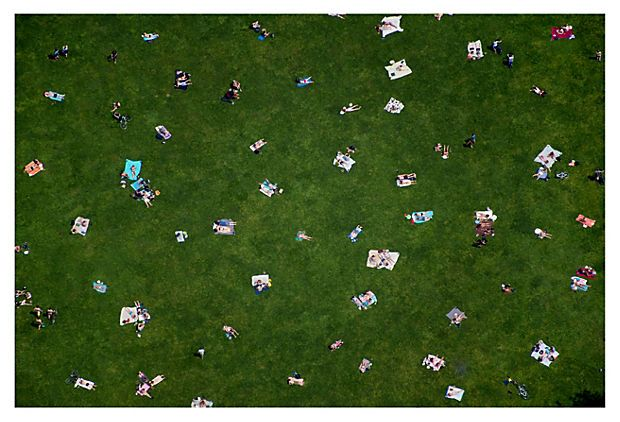 Central Park Lawn For the Wall Pinterest Central park, Prints