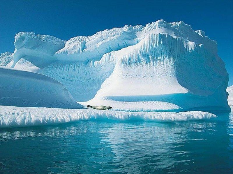 Sohotravel Expedition Au Pole Nord Des Paysage De Neige Pole Nord Antartique