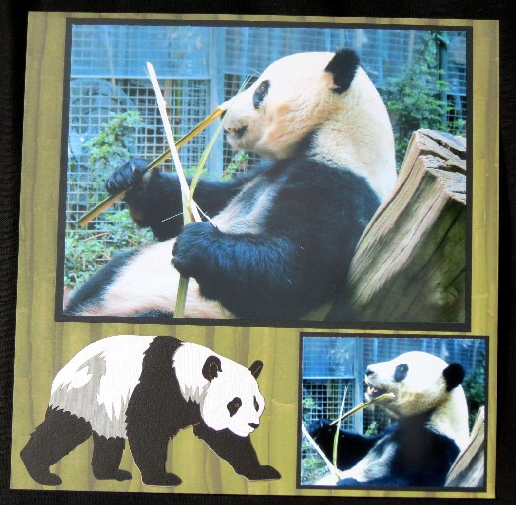 Scrapbook ideas zoo - San Diego Zoo Pandas Scrapbook Com