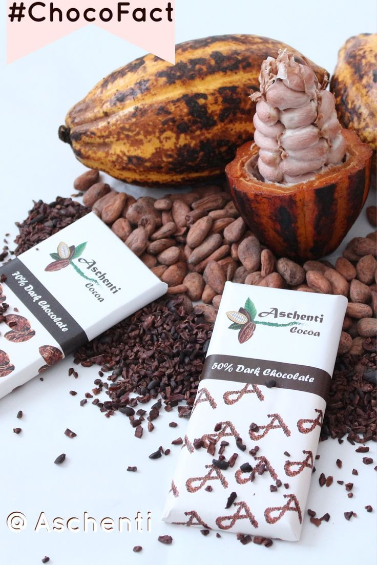 It's our #chocofact Day and we have a question for you: how do you define bean to bar? While all chocolate is made from cacao beans, the term bean to bar gives a name to chocolate that is handcrafted with passion and care. The words symbolize a balance between science, art, and ethical sourcing. They stand for craft, and even started a movement - the Craft Chocolate Movement led by chocolate makers. What do the words bean to bar mean to you?