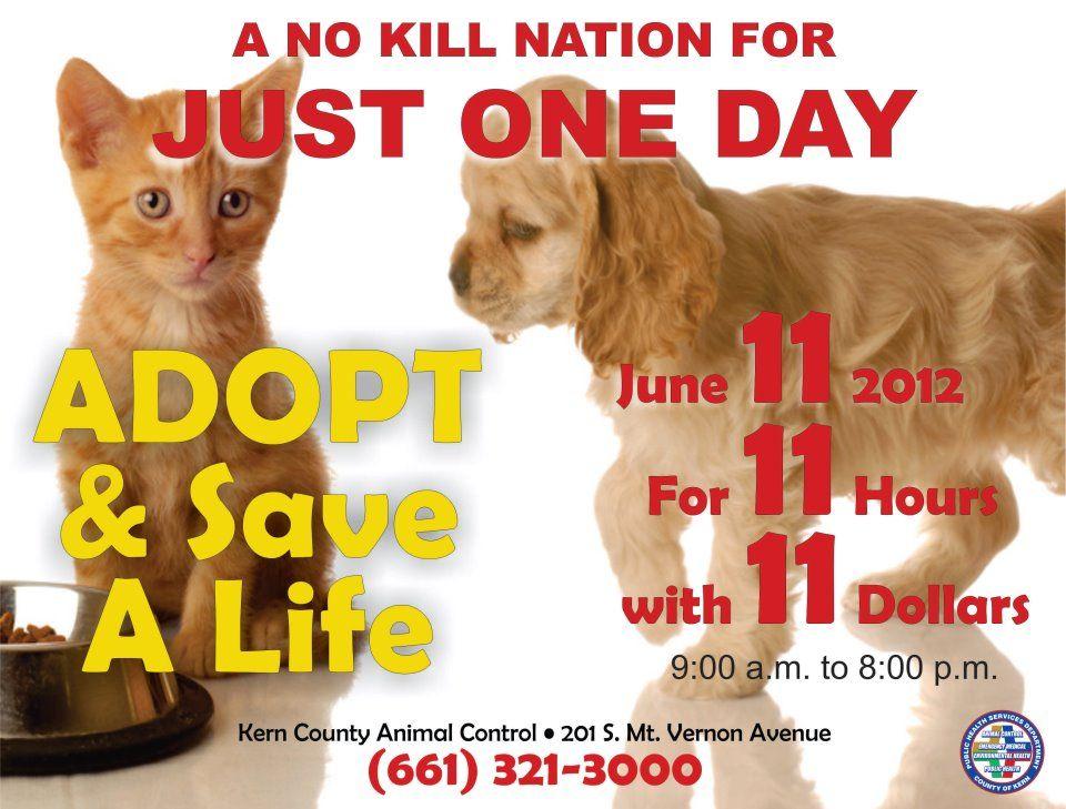 kerncounty No kill animal shelter