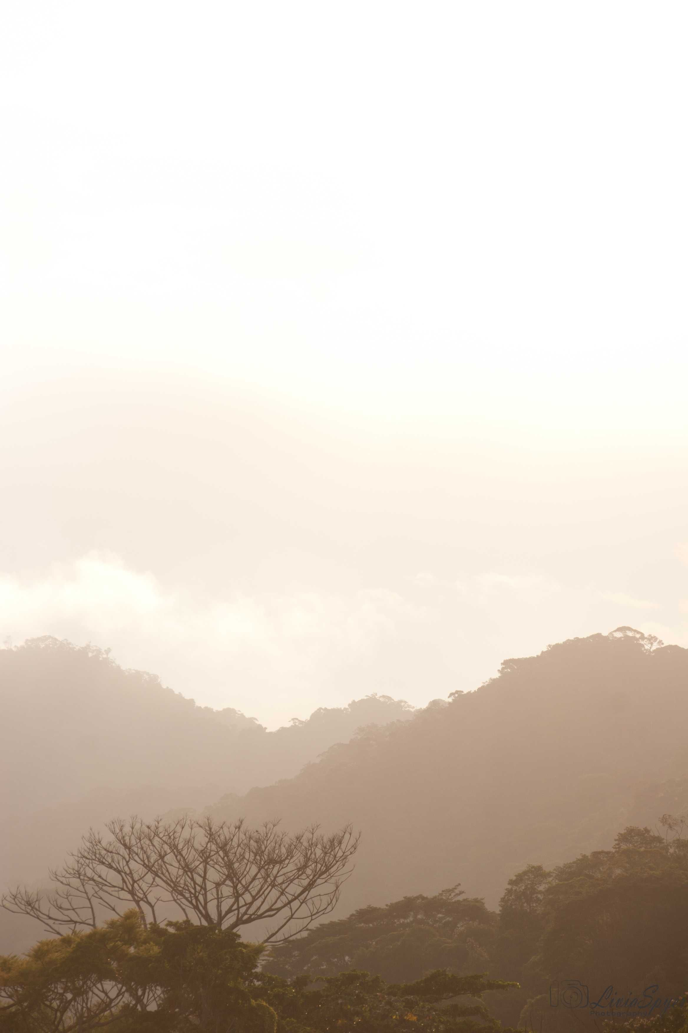 paisagem montanhas #liviaspyer #liviaspyerphotography