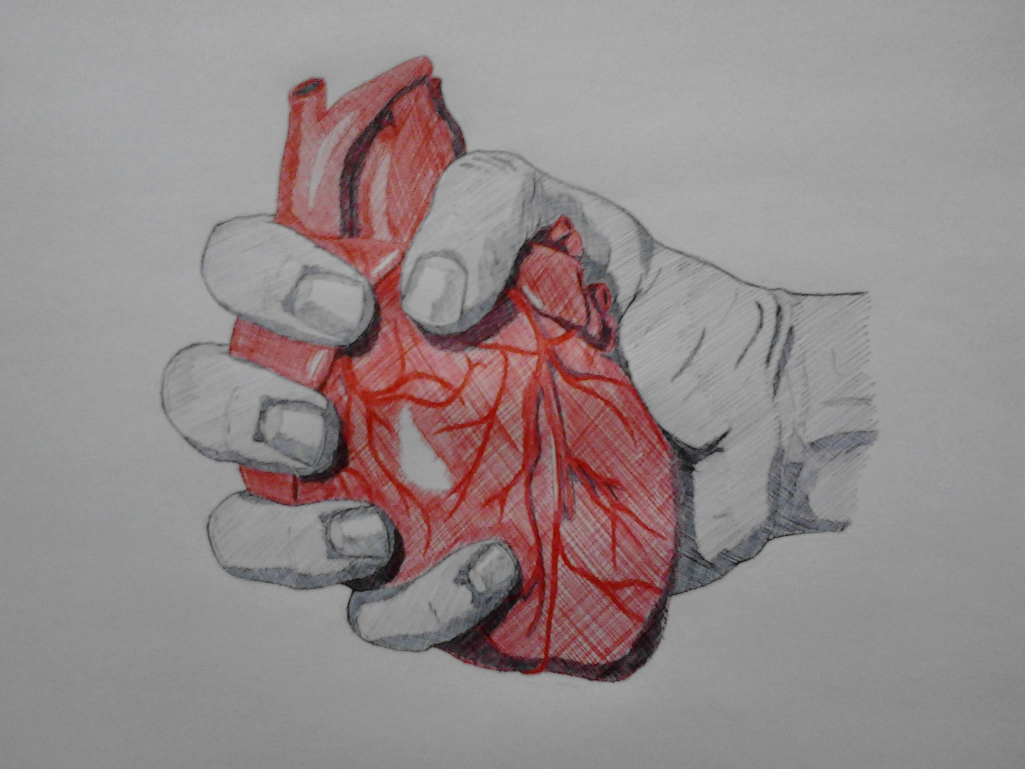 Hand Holding Heart Drawing | www.pixshark.com - Images ...