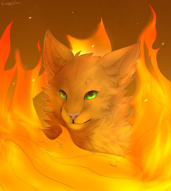Výsledek obrázku pro warriors cats firestar