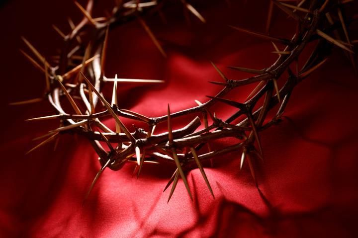 """...""""Crown of Thorns""""...instead of a """"Crown of Life""""...Jesus """"accepted it"""" none the less!""""..for our sake!..even to be """"ridicule""""..and willing to suffered and died for us""""...    ...""""When Jesus was on trial for his life, the soldiers twisted thorns into a makeshift crown and jammed it on his head ...John 19:2"""