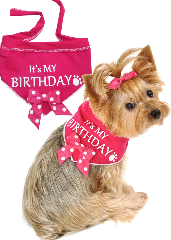 It s My Birthday (Girl) Bandana Scarf with Pin in color Pink White ... c3f1dcd1b