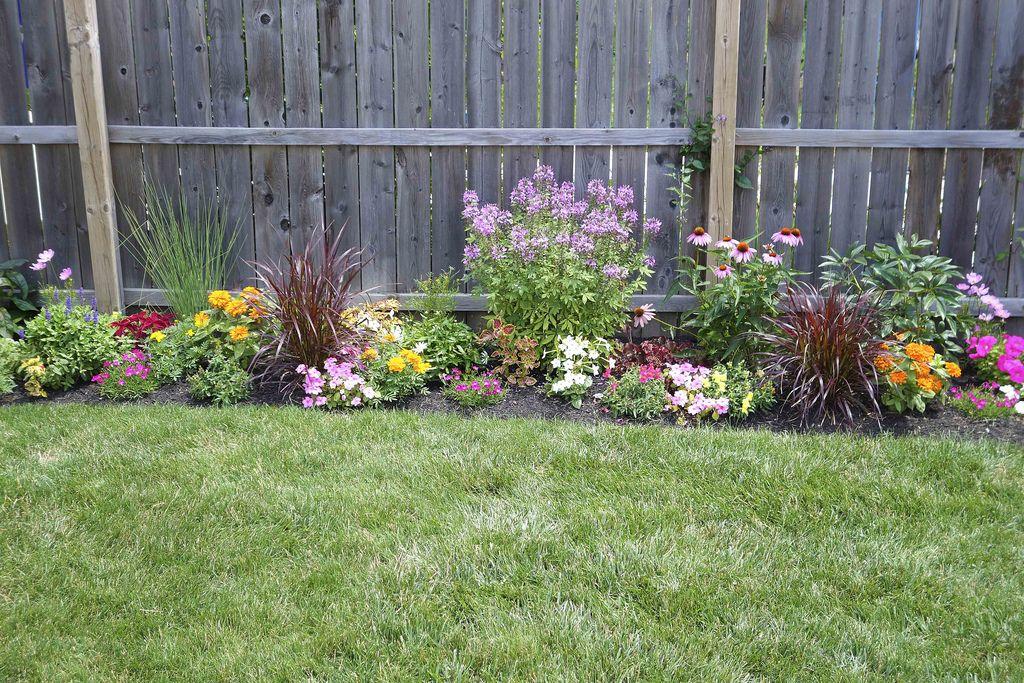 Flower Garden along Fence Fence landscaping, Landscaping