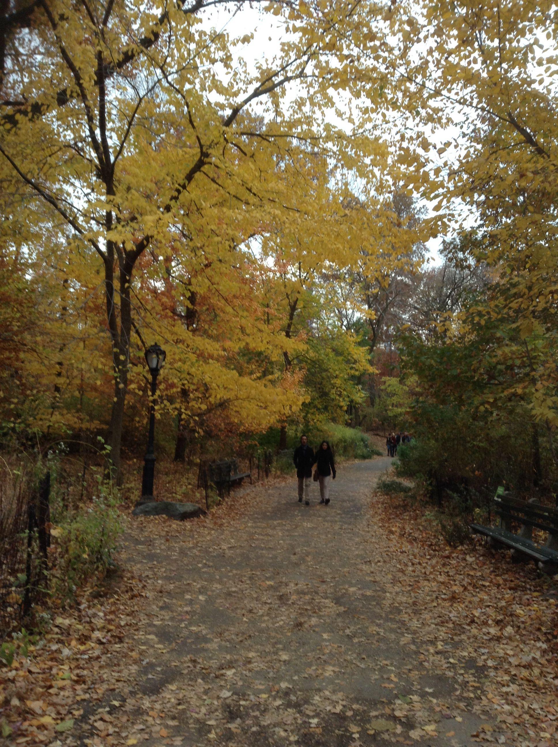 Otoño en Central Park