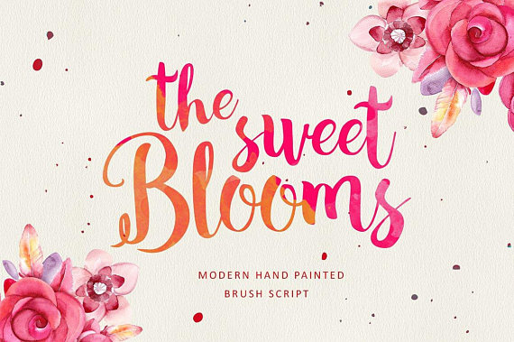 Calligraphy Font Download Brush Font Wedding Script Font