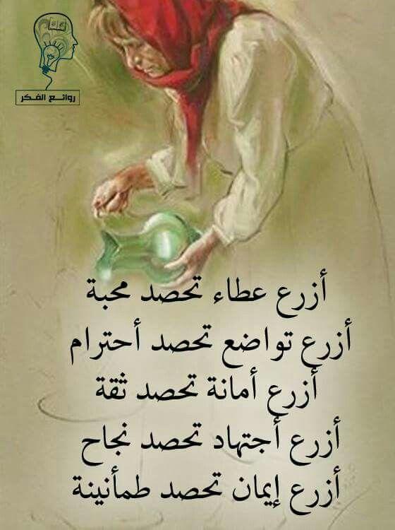 إزرع كي تحصد | words | Wisdom quotes, Arabic quotes, Arabic