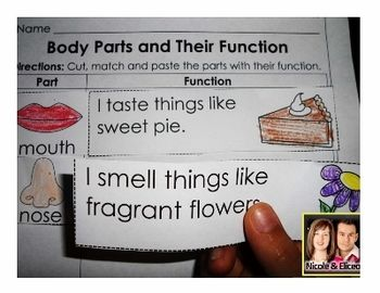 """Bodies/Senses Unit Fun """"Body Parts and Their Function ..."""