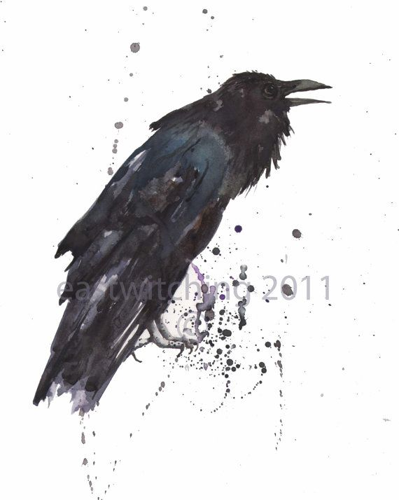 227de871c73f0 Awesome inspiration for Azental the #raven. #watercolour | Corvid ...