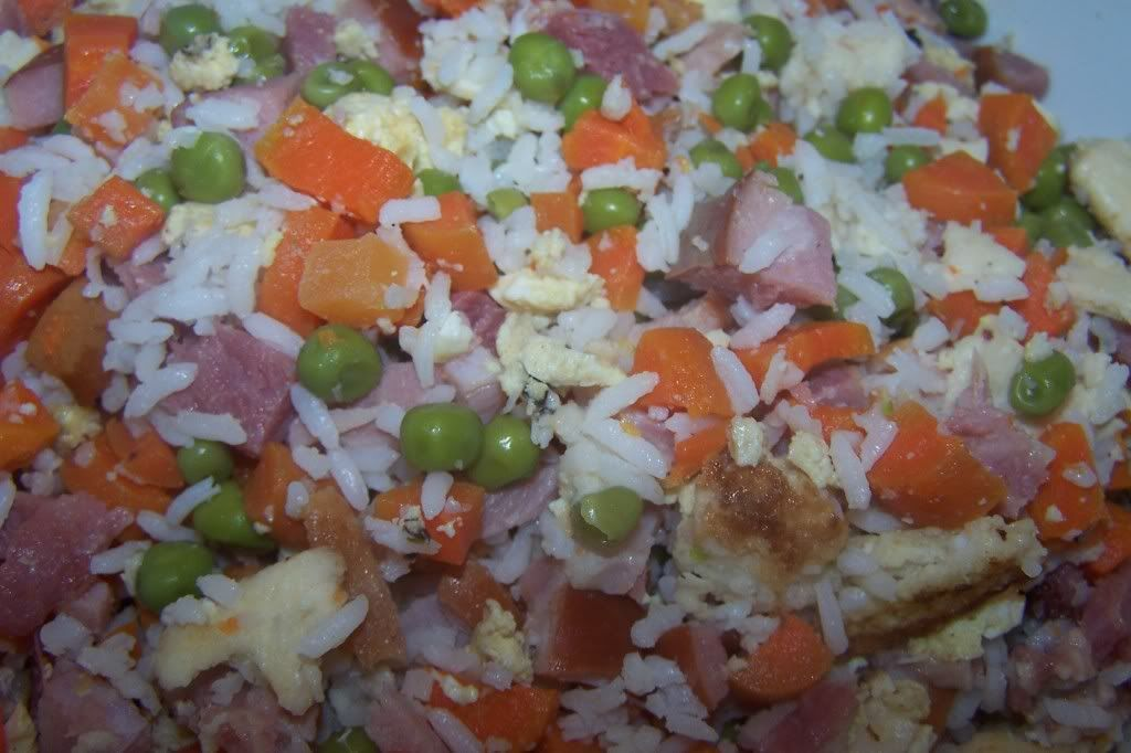 Make your own homemade dog food with rice meat vegetables make your own homemade dog food with rice meat vegetables carrots peas forumfinder Choice Image